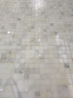 Tile Showcase White Carrera Floor Tile 2   Mini