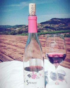 Sigo aquí disfrutando del 5 Rosas en la terraza de Losada. 🍷😄💘☀ #díasdeverano #bohochic #mencia #Bierzo #losada #rosewine #vinodeverano #bottlesofwine #WineandDine #igersbierzo #vinosdelbierzo #winesfromspain #5rosas #mywine #julio #lowxury...
