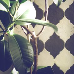 Amazing pattern. Handmade tiles, black and white. Interior design ideas.