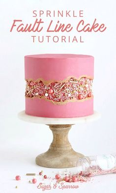 Line Cake Tutorial - True. -Sprinkle Fault Line Cake Tutorial - True. - Add an edible image to the trendy fault line cake. Check out how Sweet Layers creates this beauty fault line cake with an edible image. Strawberry Fault Line Cake Tutorial + Video Pretty Cakes, Beautiful Cakes, Amazing Cakes, It's Amazing, Cake Decorating Techniques, Cake Decorating Tutorials, Decorating Cakes, Birthday Cake Decorating, Cake Decorating Frosting