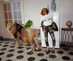 Gucci SS17 campaign lion Glen Luchford Alessandro Michele