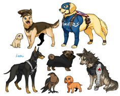 My favorite  part of this is that everyone else is dogs except FALCON IS AN ACTUAL FALCON