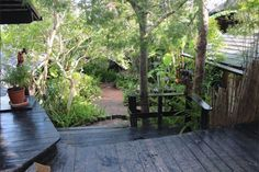 Bush Baby Forest Lodge B&B accommodation in wooden chalets in the heart of Knysna, along the Garden Route. Knysna, Forest Garden, In The Heart, African Art, Cosy, Distance, Ethnic, Restaurants, Shops