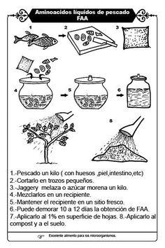 Aminoacidos liquidos del pescado (FAA) Natural Farming, Microbiology, Nature, Mini, Korean, Gardening, Google, Microorganisms, Growing Plants