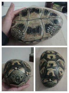 Turtle Painted Rocks, Painted Stones, Sea Turtle Shell, Turtle Painting, Rainbow Crafts, Rock Painting Designs, Diy Canvas, Stone Art, Stone Painting