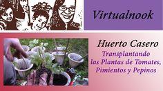 Huerto Casero: Transplantando Tomates, Pepinos, y Pimientos