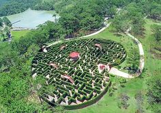 Viet Nam Center of record books confirmed the maze in the love valley in Da Lat, Lam Dong as a greatest construction of plants in Viet Nam Maze, Terracotta, Stepping Stones, Vietnam, Golf Courses, Tours, Architecture, Outdoor Decor, Plants