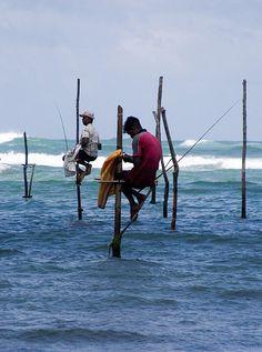 Stilt Fishermen, Southern Province, Sri Lanka