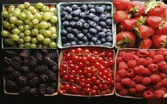 Improve Your Health with Berries