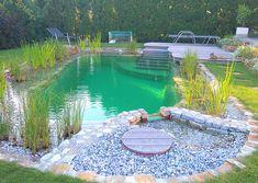Backyard Pool Designs, Small Backyard Design, Small Backyard Patio, Ponds Backyard, Backyard Ideas, Natural Swimming Ponds, Swimming Pools Backyard, Swimming Pool Designs, Pond Waterfall