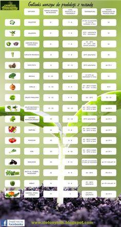Excellent simple ideas for your inspiration Garden Edging, Herb Garden, Garden Paths, Garden Landscaping, Forest Garden, Vegetable Garden Design, Garden Seeds, Edible Garden, Small Gardens