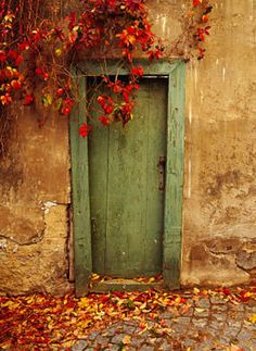 I need to buy this photograph - taken in the late fall in Prague, Czech.  Beautiful old door...