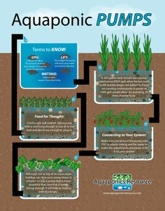 Wondering how to pick out a pump? This quick guide will help you understand the most important parts of an aquaponics pump! Aquaponics Pumps www.aquaponicsresource.com