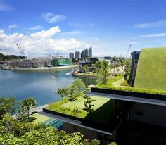 Green roofing, terraces, interior water