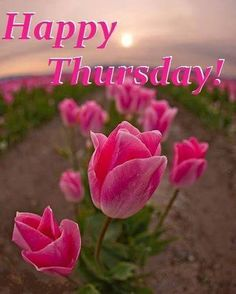 Happy Thursday!...:)[Awesome]Good morning Thursday,Happy Thursday images,Good morning Thursday images for Friends