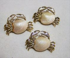Mid Century trio of gold tone blue crab scatter pins Each has a cream molded plastic clam shell body Unsigned Gold tone setting Each is 1 x 1 1/4 inches, you will receive all three Very good vintage condition, shows no wear I specialize in vintage figural animal jewelry, please visit my shop for more selections International buyers welcome, and overcharges are refunded Priority shipping is offered 120316  Want to see more great pins? Click here: https://www.etsy.com/your&#...