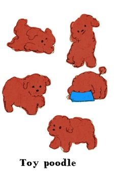 momoro illustration toy poodle Source by goodforfuture The post appeared first on Calvert Kennels. Animal Drawings, Cute Drawings, Poodle Drawing, Graph Design, Dog Illustration, Illustrations And Posters, Dog Art, Drawing Reference, Doodle Art