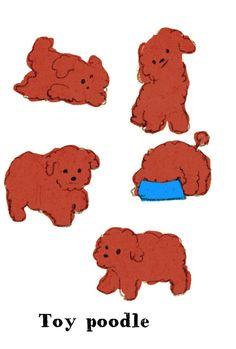 momoro illustration toy poodle