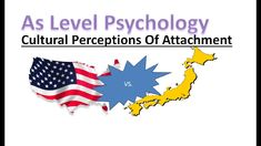 What happened in the Japanese Amae study? In this lesson we will learn how different cultures perceive attachment in different ways. A Level Revision, Psychology A Level, Perception, Study, Culture, Make It Yourself, Shit Happens, Twitter, Instagram