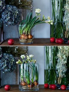 【ELLE DECOR】フラワーのプロが伝授! おしゃれな花の飾り方レッスン|エル・オンライン