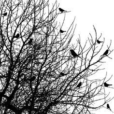 Deadened branches with crow design