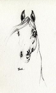 Mammals Drawing - Arabian Horse Sketch 2014 05 29d by Angel Tarantella