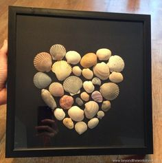 Arrange shells from a beach vacation in a shadow box