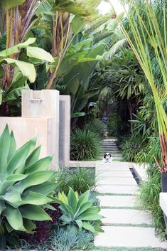 If you are working with the best backyard pool landscaping ideas there are lot of choices. You need to look into your budget for backyard landscaping ideas Tropical Garden Design, Tropical Backyard, Tropical Landscaping, Modern Landscaping, Backyard Landscaping, Landscaping Ideas, Backyard Ideas, Small Tropical Gardens, Stone Backyard