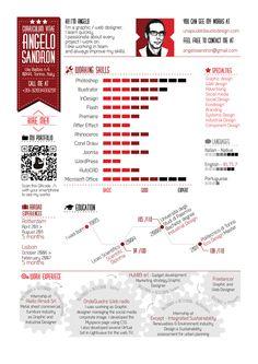 Infographic Resume - Curriculum Vitae by Angelo Sandron, via Behance