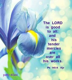 The Lord is good to all and his tender mercies are over all his works.   Psalms 145:9
