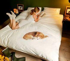 Und der Hund darf doch im Bett schlafen! ;-)