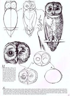 Сова в самых разных видах творчества - Ярмарка Мастеров - ручная работа, handmade Draw An Owl, How To Draw Owl, How To Draw Animals, Drawing Animals, Drawings Of Owls, Animal Drawings, Pencil Drawings, Drawing Lessons, Drawing Tips