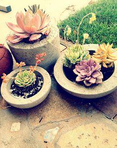 DIY concrete planters.