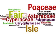 The Flora of Fair Isle- Plant families