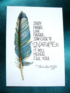 Feather Art, Nature Quote, Teal Blue, 5x7 Print - Study Nature. $10.00, via Etsy.