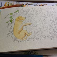 Starting something with my furry friend  moleskine graphicdiary drawing watercolor dwgdaily dog