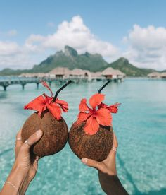 Vacay in an over the water villa drinking out of coconuts. Wanderlust bucket list of places to travel and see on a tropical vacation trip to the beach or an island. Summer Dream, Summer Of Love, Summer Fun, Summer Beach, Spring Summer, Summer Drinks, Beach Aesthetic, Summer Aesthetic, Bora Bora