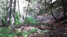 Video of the Lower Sisquoc Loop through the Los Padres National Forest. Los Padres National Forest, Santa Barbara, Southern California, Memorial Day, Hiking, Walks, Trekking, Hill Walking