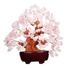 7 Inch Pink Crystal Money Tree Feng Shui Natural Rose Quartz Gem Stone Money Tree for Office Home table Decoration -- To view further for this item, visit the image link. Pink Gemstones, Crystals And Gemstones, Feng Shui, Office Decor, Home Office, Serenity Garden, Peaceful Home, Money Trees, Christmas Accessories