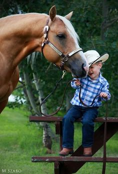 Little cowboy and palomino horse Cowboy Girl, Little Cowboy, Horse Pictures, Cute Pictures, Animals For Kids, Cute Animals, Cute Kids, Cute Babies, Foto Cowgirl