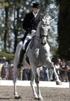 andreas helgstrand | Andreas Helgstrand and Matine, 2006 Danish Dressage Champions ... -Proud Of Being Danish! <3