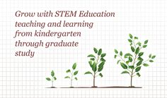 Grow with STEM Education: teaching and learning from kindergarten through graduate study Engineering Careers, Elementary Education, Workplace, Curriculum, Kindergarten, Graduation, Study, Teacher, Science