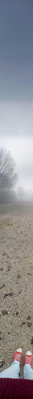 #fog #foggy #rainy #beautiful #fall #autumn #slovakia #sveter #pleteny #cerveny #converse