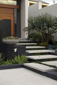 Tim Davies Landscaping. Love these floating concrete steps and plantings at this entryway.