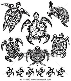 Clipart of Decorative turtles k11570473 - Search Clip Art, Illustration Murals, Drawings and Vector EPS Graphics Images - k11570473.eps