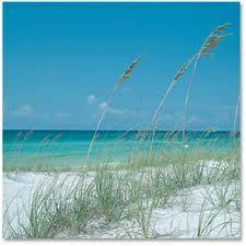 7 Reasons Why I Love the Beach