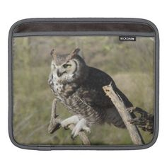 $$$ This is great for          	Great Horned Owl iPad Sleeve           	Great Horned Owl iPad Sleeve you will get best price offer lowest prices or diccount couponeDeals          	Great Horned Owl iPad Sleeve Here a great deal...Cleck Hot Deals >>> http://www.zazzle.com/great_horned_owl_ipad_sleeve-205720461975852325?rf=238627982471231924&zbar=1&tc=terrest