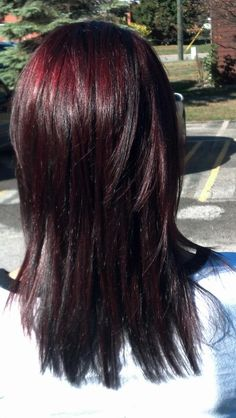 Black cherry hair color @Justina Siedschlag Sanders lets hope it turns out like this!