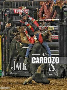 Cowboys Today, Rodeo Cowboys, Bucking Bulls, Luca, Rodeo Life, Bull Riders, Cowboy And Cowgirl, World Of Sports, Breaking Bad
