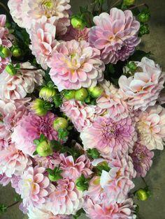 Violet argent ivoire rose fleur guirlande bandeau cheveux couronne festival boho 1957